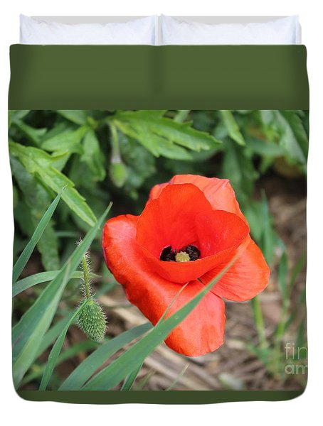 Lonesome Poppy Duvet Cover