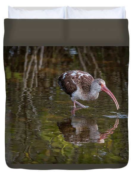 Long-billed Curlew - Male Duvet Cover