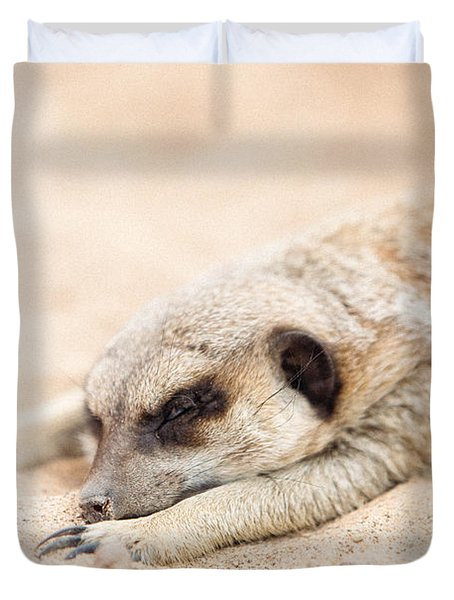 Long Day In Meerkat Village Duvet Cover