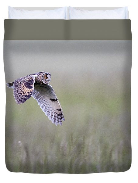 Long Eared Owl Hunting At Dusk Duvet Cover