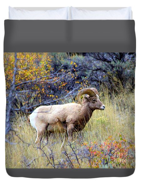 Long Horns Sheep Duvet Cover