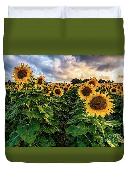 Long Island Sunflowers  Duvet Cover