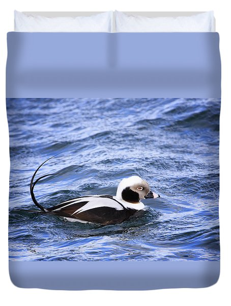 Long-tailed Duck 2 Duvet Cover by Gary Hall