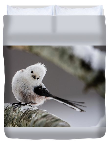 Long-tailed Look Duvet Cover