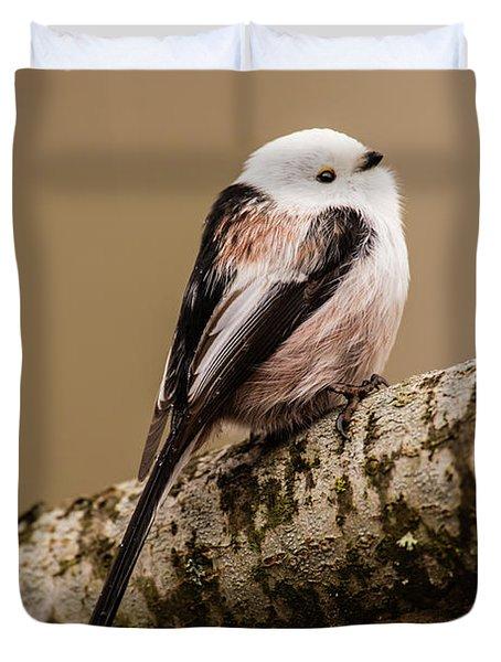 Long-tailed Tit On The Oak Branch Duvet Cover