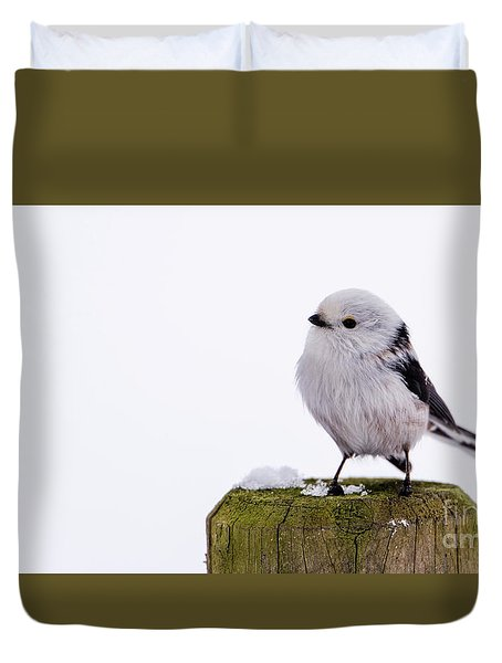 Long-tailed Tit On The Pole Duvet Cover by Torbjorn Swenelius