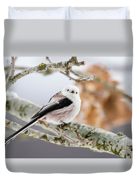 Long-tailed Tit Duvet Cover by Torbjorn Swenelius