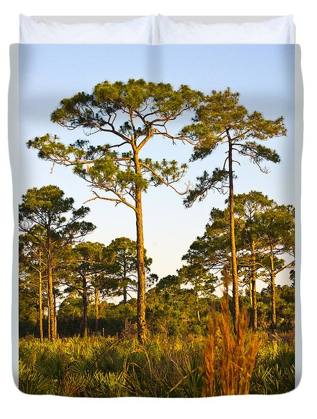 Longleaf Pines, Sunrise, Myakka State Forest Duvet Cover