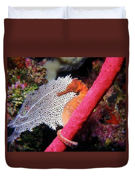 Longsnout Seahorse, Roatan, Honduras Duvet Cover