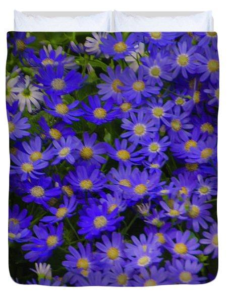 Longwood Hybrid Cineraria Duvet Cover