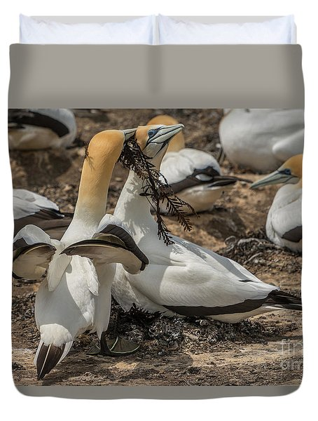 Look What I've Brought For You Duvet Cover