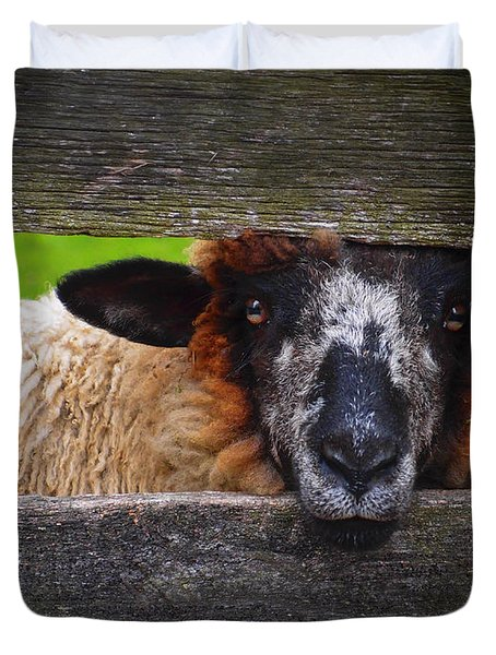 Duvet Cover featuring the photograph Lookin At Ewe by Skip Hunt