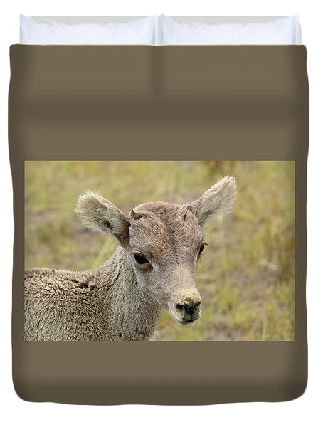 Duvet Cover featuring the photograph Looking At You Kid by Bruce Gourley
