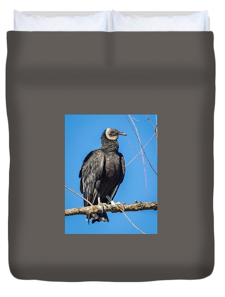 Duvet Cover featuring the photograph Looking For A Fresh Kill by Gregory Daley  PPSA