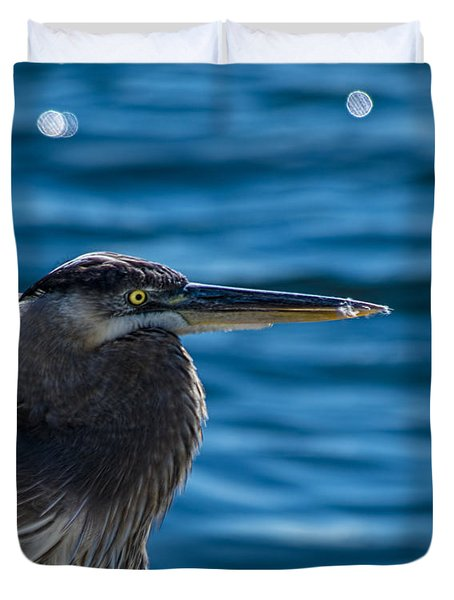 Looking For Lunch Duvet Cover by Marvin Spates