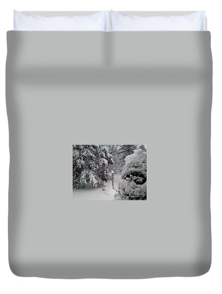Looking Out My Front Door Duvet Cover by Carol Wisniewski