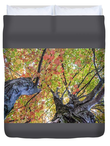 Looking Up - 9670 Duvet Cover by G L Sarti
