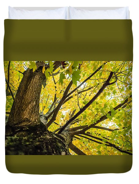 Looking Up - 9676 Duvet Cover by G L Sarti