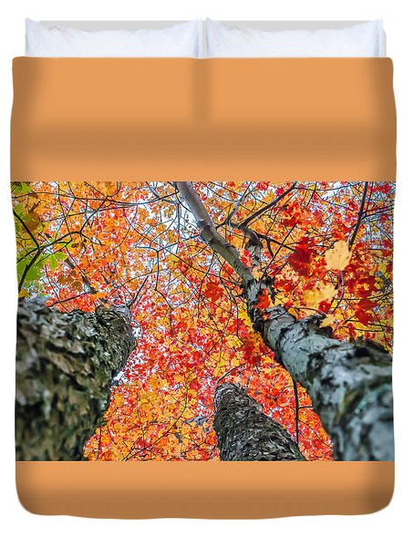 Looking Up - 9743 Duvet Cover by G L Sarti