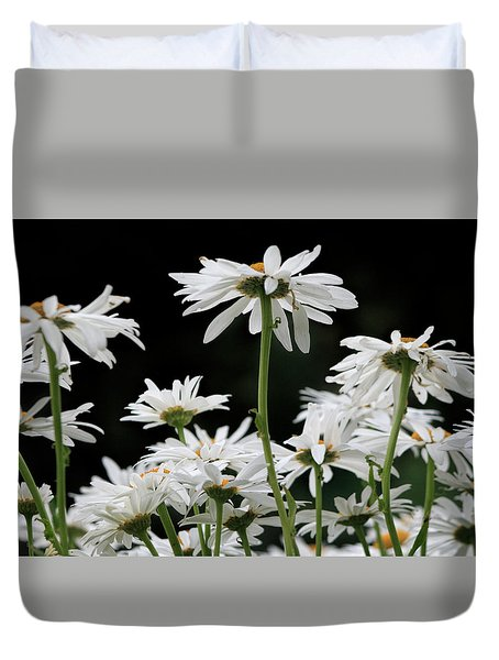 Looking Up At At Daisies Duvet Cover