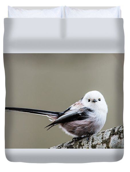 Duvet Cover featuring the photograph Loong Tailed by Torbjorn Swenelius