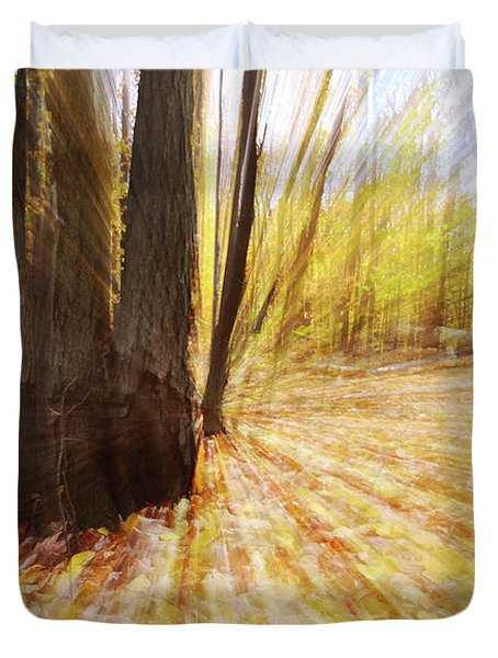 Lost In Time Duvet Cover by Mircea Costina Photography