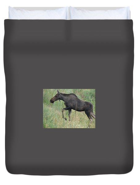 Lost Moose On The Loose In Evergreen Colorado Duvet Cover
