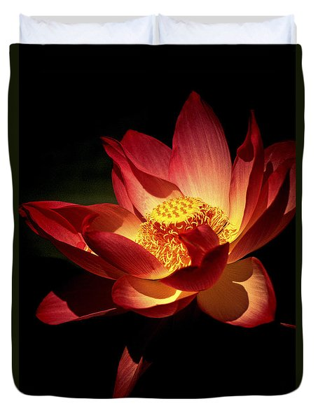 Lotus Blossom Duvet Cover by Paul W Faust -  Impressions of Light