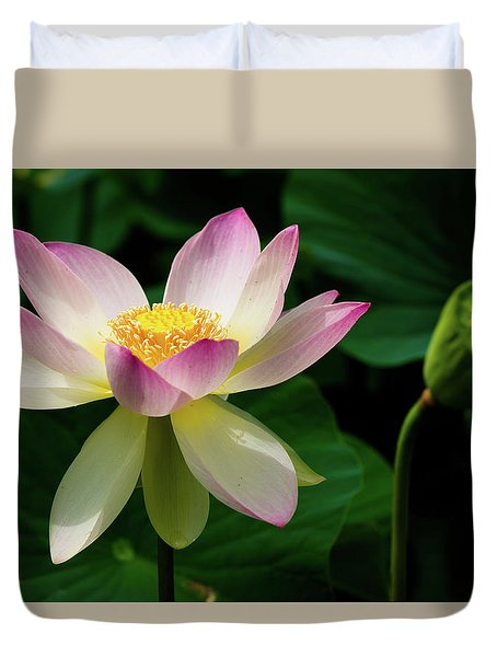 Lotus Lily In Its Final Days Duvet Cover