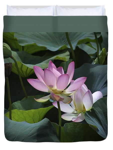 Duvet Cover featuring the photograph Lotus by Raffaella Lunelli
