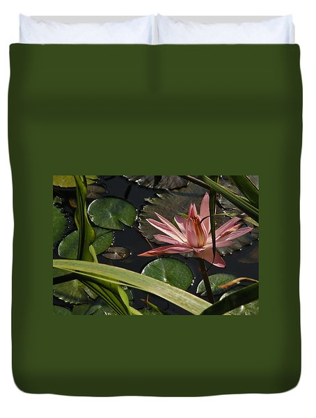 Louisiana Waterlilly Duvet Cover by Ronald Olivier