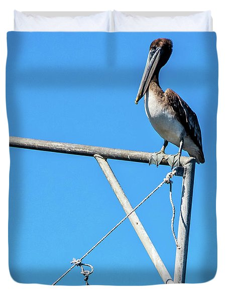 Louisiana's State Bird Duvet Cover