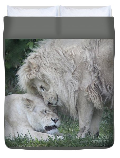 Love Lions Duvet Cover