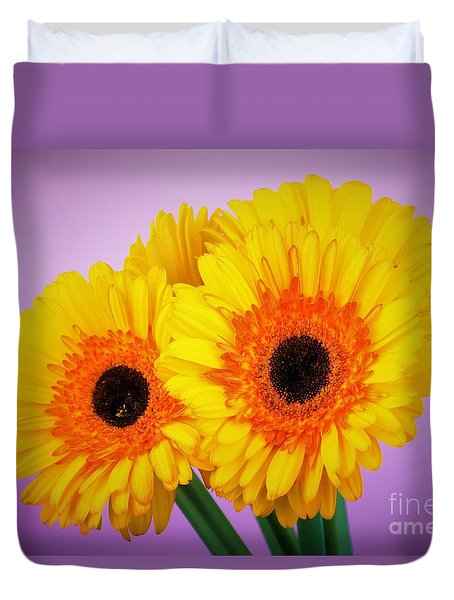 Lovely And Beautiful - Gerbera Daisies Duvet Cover by Ray Shrewsberry