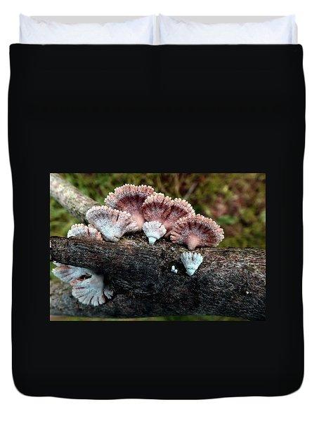 Lovely Lichens Duvet Cover