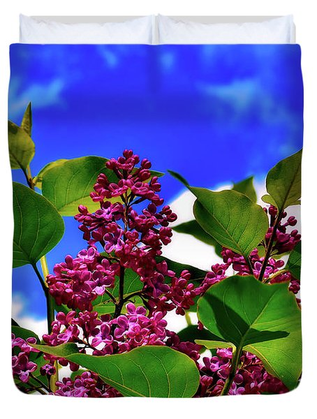 Lovely Lilac Blooms Duvet Cover by Alexas Fotos