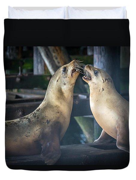 Harbor Seals Lovers Quarrel Duvet Cover by James Hammond
