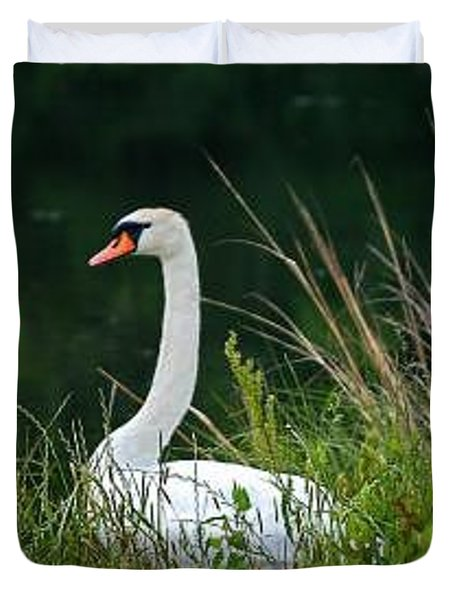Loving Swans Duvet Cover by Clayton Bruster