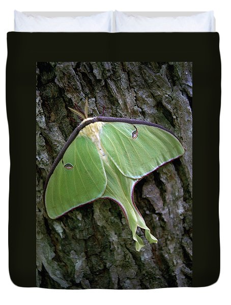 Duvet Cover featuring the photograph Luna Moth by Marie Hicks