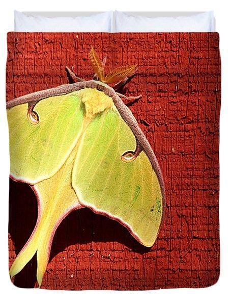 Luna Moth On Red Barn Duvet Cover