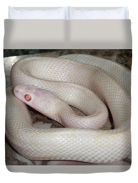 Luna White Snake Duvet Cover by Patricia McNaught Foster