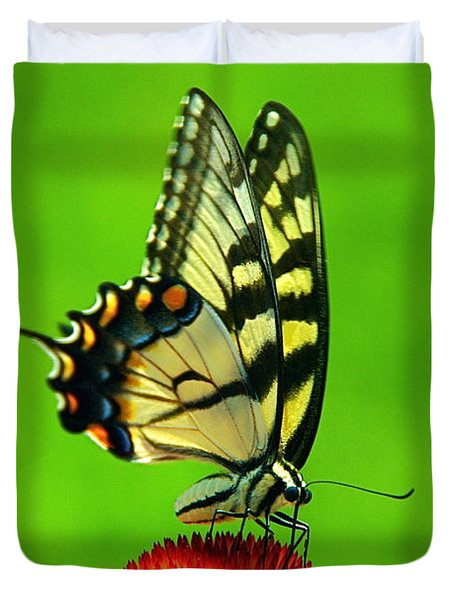 Duvet Cover featuring the photograph Lunchtime by Byron Varvarigos