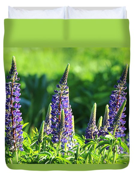 Lupine Flowers Stony Brook New York Duvet Cover