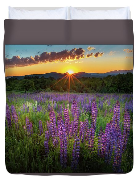 Lupine Lumination Square Duvet Cover