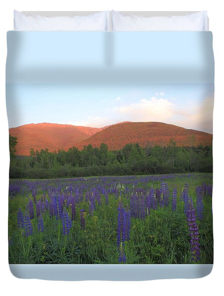 Lupine Meadow And Northern Presidentials White Mountains Duvet Cover