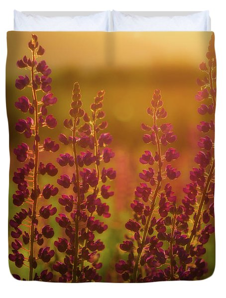 Lupines At Dawn Duvet Cover