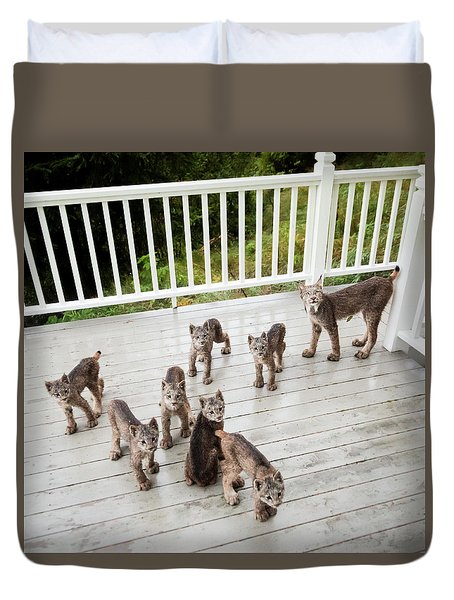 Lynx Family Portrait Duvet Cover