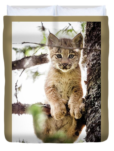 Lynx Kitten In Tree Duvet Cover