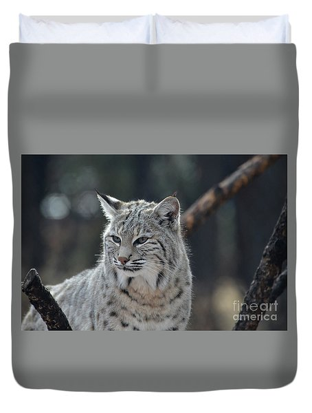 Lynx With A Very Unhappy Face Duvet Cover
