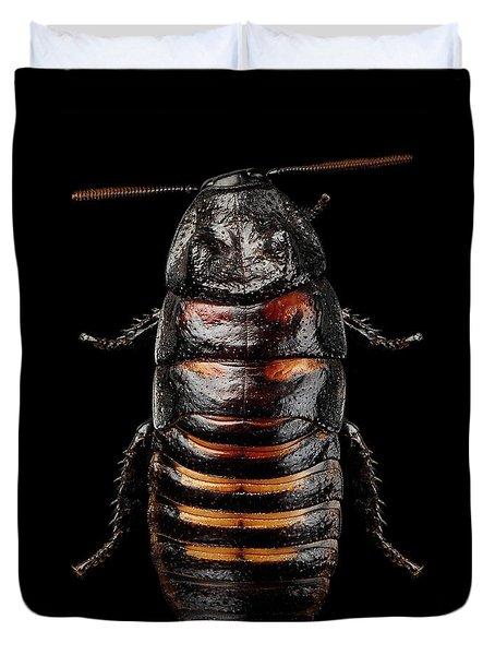 Madagascar Hissing Cockroach Duvet Cover